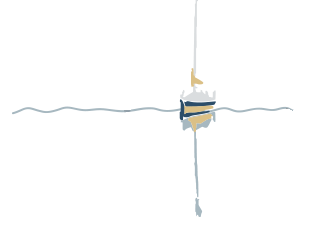 Bishops Bay Logo